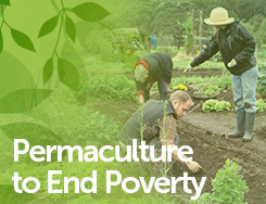 SDA - Permaculture to End Poverty